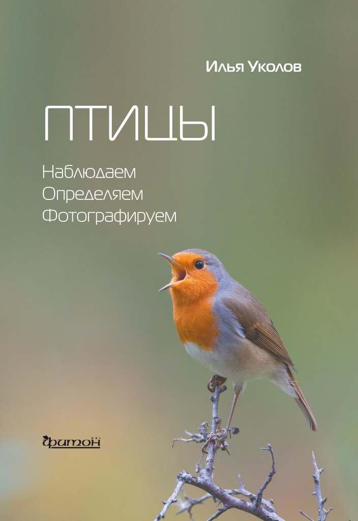 Птицы_Уколов