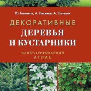 Декоративные деревья и кустарники: Иллюстрированный атлас
