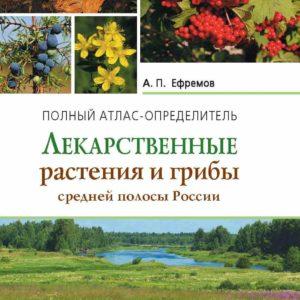 Лекарственные растения и грибы средней полосы России: Атлас-определитель