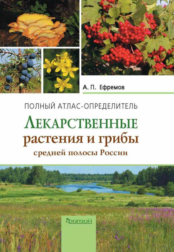 Лекарственные растения и грибы-min
