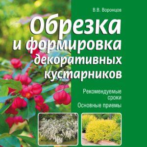 Обрезка и формировка декоративных деревьев и кустарников