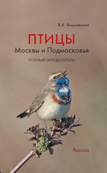 Птицы Москвы-min