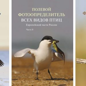 Полевой фотопределитель птиц европейской части России. (комплект в 3-х частях)