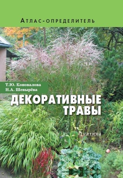 Декоративные травы-min