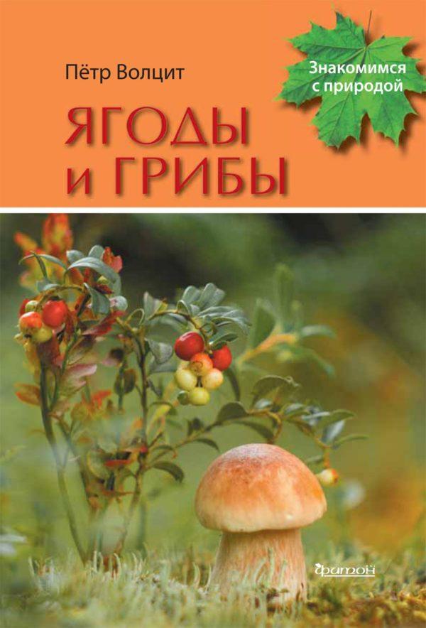 Ягоды и грибы-min