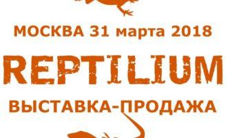 Выставка-продажа Рептилиум