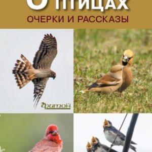 О птицах. Очерки и рассказы