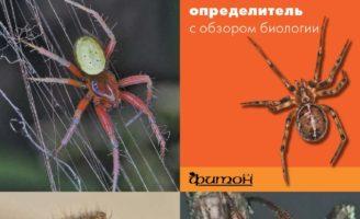 Издание книги «Пауки средней полосы России»