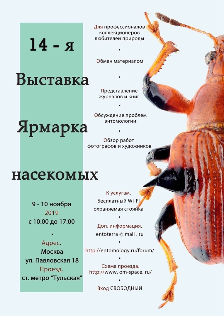 выставка-ярмарка насекомых