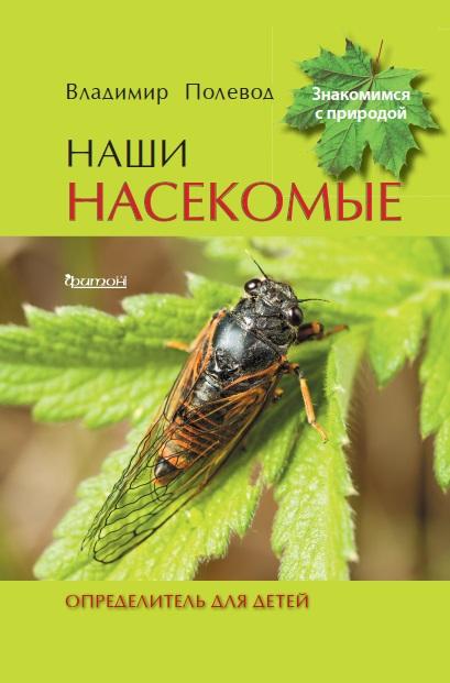 Наши насекомые
