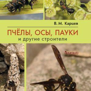 Пчелы, осы, пауки и другие строители