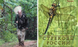Интервью с О.Э. Костериным
