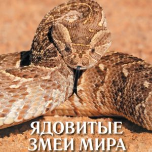 Ядовитые змеи мира