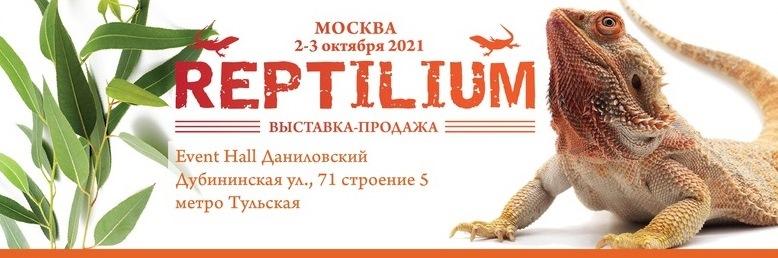 Осенний рептилиум